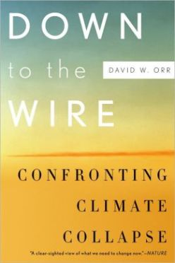 Down to the Wire- Confronting Climate Collapse